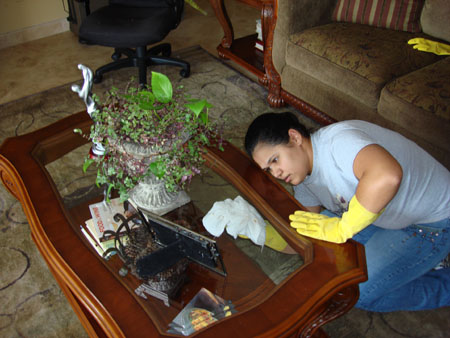 HouseCleaningBocaRatonFlorida (124)